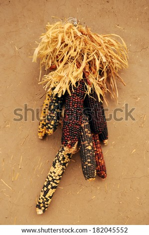 Color corn on wall in Taos Pueblo, New Mexico, USA - stock photo
