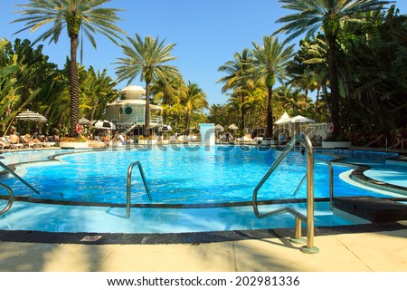 Color DSLR image of a Resort Pool in South Beach, Miami, Florida.  The water is blue, and there are palm trees framing the pool.  The image is in horizontal orientation with ample copy space for text. - stock photo