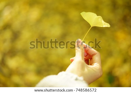https://thumb9.shutterstock.com/display_pic_with_logo/167494286/748586572/stock-photo-color-leaves-in-autumn-748586572.jpg
