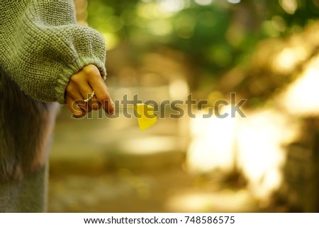 https://thumb9.shutterstock.com/display_pic_with_logo/167494286/748586575/stock-photo-color-leaves-in-autumn-748586575.jpg