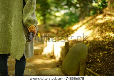 https://thumb9.shutterstock.com/display_pic_with_logo/167494286/748586578/stock-photo-color-leaves-in-autumn-748586578.jpg