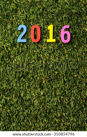 Color wooden 2016 on grass