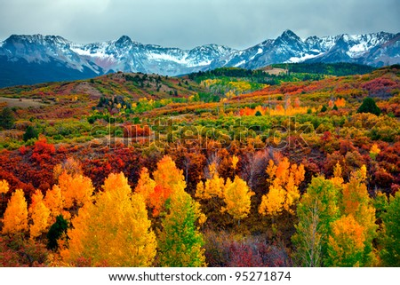 Colorado Autumn - stock photo