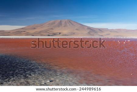 Colorado Lagoon Desert panorama, Altiplano, Bolivia - stock photo