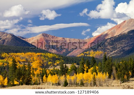 Colorado mountain landscape with golden fall aspen tree forest