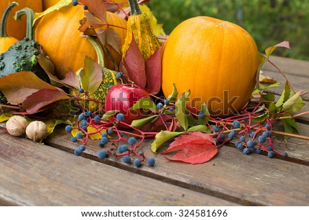 colored autumn decoration with pumpkins - stock photo