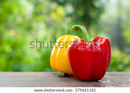 colored bell peppers on table with natural  background  - stock photo