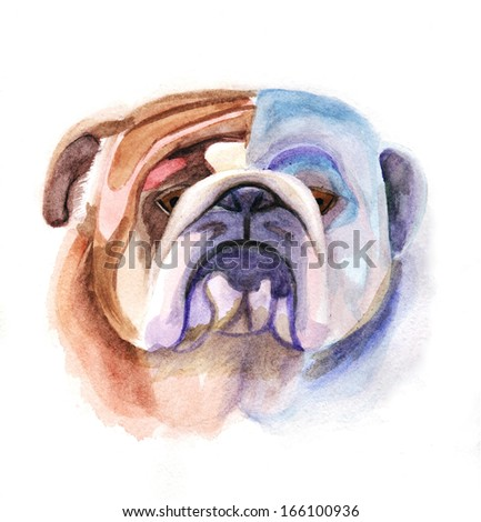 Colored bulldog's head. Watercolor picture. Hand-drawing - stock photo