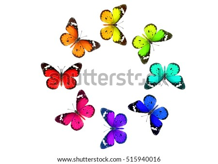 Colored Butterflies round pattern isolated on white
