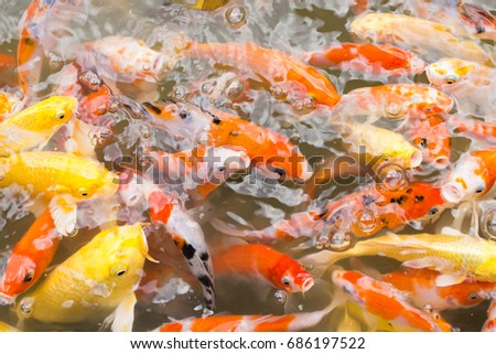 craps stock images, royalty-free images & vectors | shutterstock