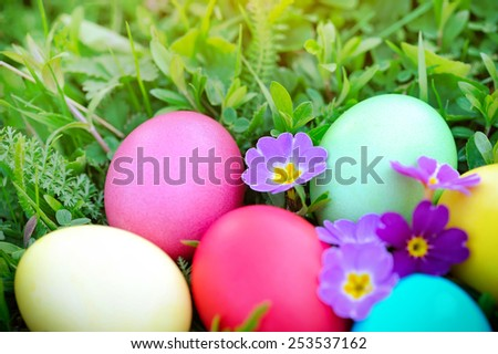 Colored easter eggs on green grass - stock photo