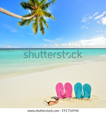 Colored flip flops and sunglasses on the tropical beach  - stock photo