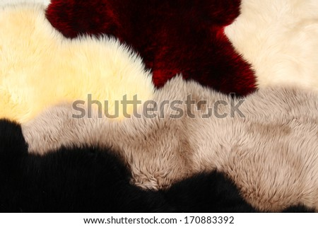 Colored fluffy skins of sheep - stock photo