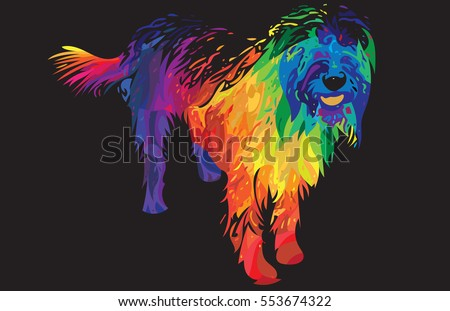 Colorful abstract illustration of a labradoodle dog with long hair isolated on black