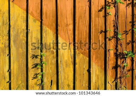 Colorful aged plank - stock photo
