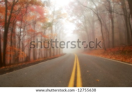 colorful and misty morning on road in rural setting