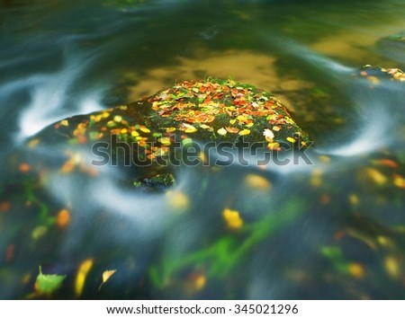 Colorful aspen leaves on boulder in mountain stream. Cold water blurred by long exposure, blue reflection in water level.  - stock photo