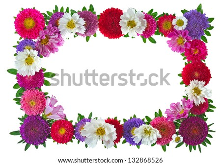 colorful aster floral frame isolated on white background - stock photo