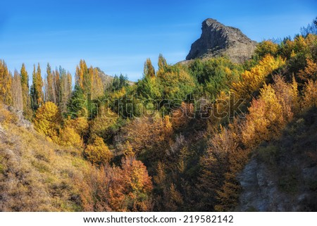 Colorful autumn forest on the mountain, Arrowtown, New Zealand - stock photo