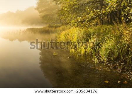 Colorful Autumn Forest reflecting in Calm Lake at Sunrise. North Poland , Pomerania (Pomorze) district/ Colorful Autumn Forest reflecting in Calm Lake at Sunrise - stock photo