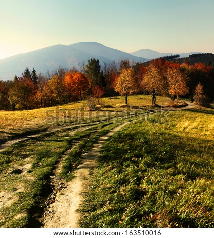 Colorful autumn in Czech mountains Beskydy in Europe - stock photo
