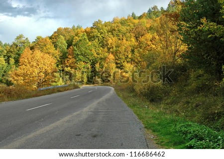 Colorful autumn in mountain, Colorful trees.