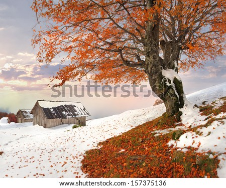 Colorful autumn landscape in the mountain village. Sunrise. - stock photo