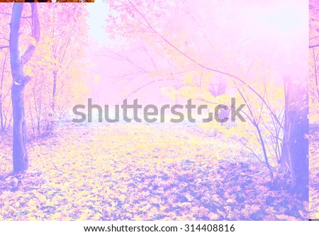 colorful autumn landscape with yellow trees and sun, natural background