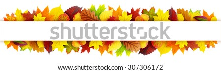 Colorful autumn leaves banner with clipping path - stock photo