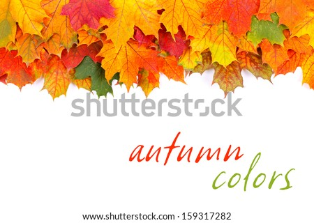 Colorful autumn leaves border isolated on white, with place for your text on white  - stock photo