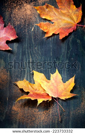 Colorful autumn maple leaves on textured wooden table, with cocoa or chocolate powder sprinkles - stock photo