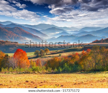 Colorful autumn morning; in the mountains. - stock photo