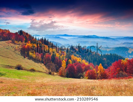 Colorful autumn morning in the mountains. Sunrise