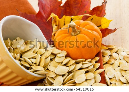 Colorful autumn still life with a yellow bowl overflowing with pumpkin seeds - stock photo
