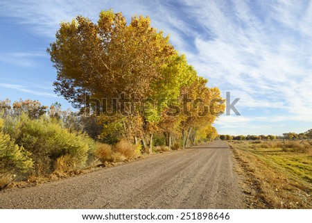 Colorful Autumn Trees Along Country Road - stock photo