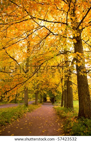 colorful autumn trees in the park - stock photo