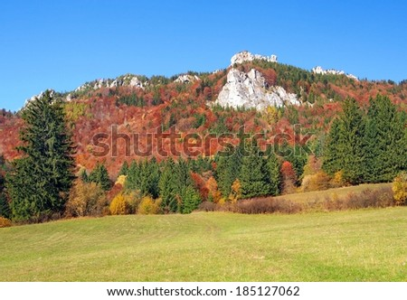 Colorful autumn view showing meadow, forest and rocky formations in Vratna Valley (Vratna Dolina), Mala Fatra. This locality is a part of Mala Fatra National Park and State Nature Reserve.