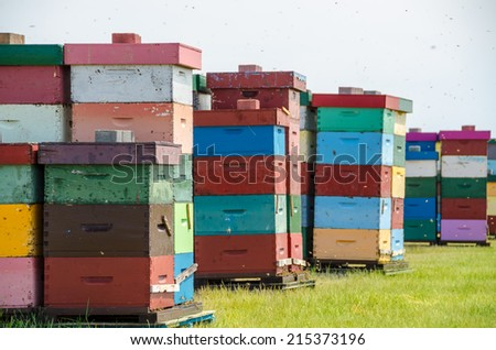 Colorful beehives - stock photo