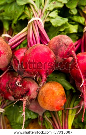 Colorful beet variety for sale at a local farmer's market - stock photo
