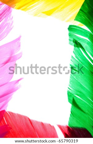 colorful bird feather frame background