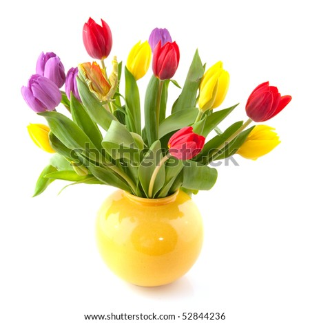 Colorful bouquet of tulips in yellow vase