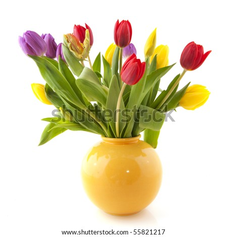 Colorful bouquet tulips in yellow vase on white background - stock photo