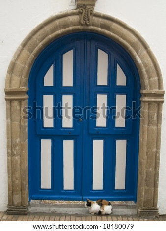 Colorful cat and blue and white door in Morocco - stock photo