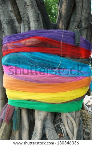 colorful cloth on tree,thai tradition.
