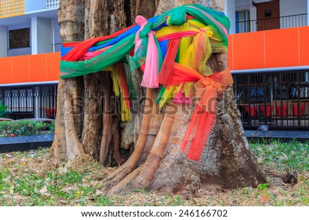 colorful cloth on tree,thai tradition. - stock photo