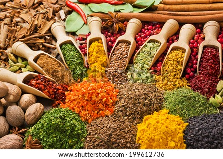 colorful composition with different spices and herbs - stock photo