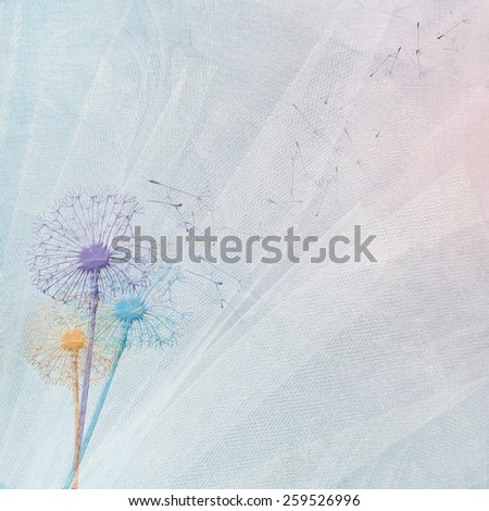 colorful dandelions on bridal tulle background - stock photo