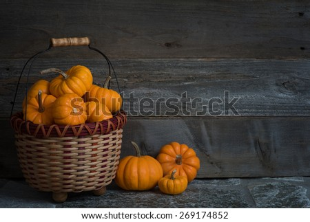 Colorful Dark and Moody Basket Full of Thanksgiving or Halloween, Fall Mini Pumpkins on Stone Floor against Rustic Wood Board Wall Background with room or space for copy, text, words.  Horizontal  - stock photo