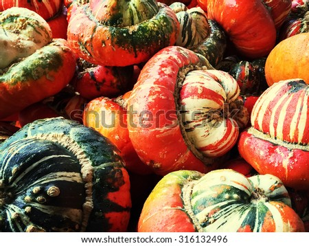 Colorful decorative Turban squashes. Autumn vegetables. - stock photo