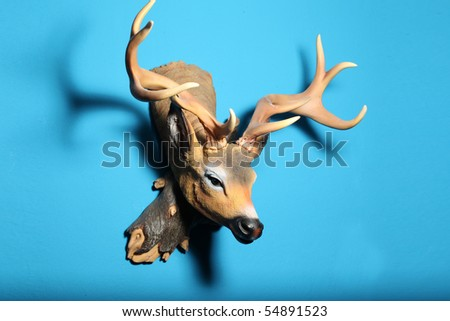 colorful deer head isolated